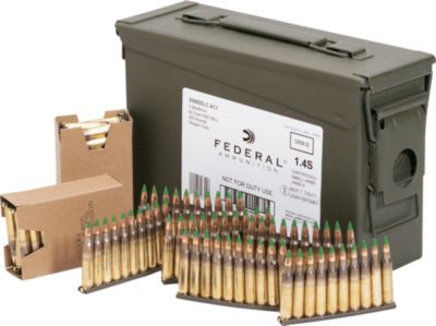 Federal 5.56 Nato Ammunition with Ammo Can